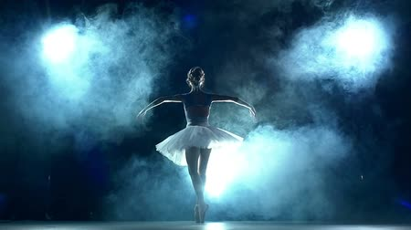 balerína : graceful ballerina doing a workout in the classroom. Smoke, fog, silhouette. ballet dancer in white tutu, girl in pointe, whirls around you, slow motion Dostupné videozáznamy