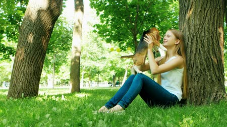 playing with a dog : Girl playing with her beagle dog in summer park. beautiful girl near a tree, kissing the dogs nose Stock Footage