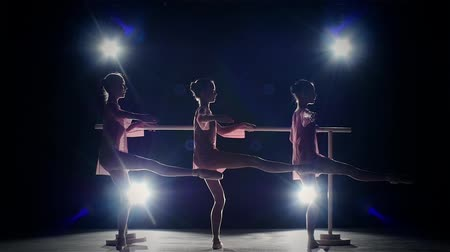 pózol : Three little ballet girls in  tutu posing at ballet barre together in white studio. slow motion