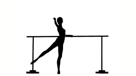 bale : little Ballerina posing, reflection in the mirror on the background. posing ballet barre. silhouette. slow motion