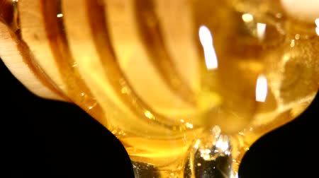 drizzler : Honey dripping from a wooden honey dipper isolated on black background Stock Footage
