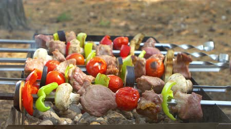 quintal : Assorted meat from chicken and pork and various on skewers vegetables for barbecue on grill, turning around