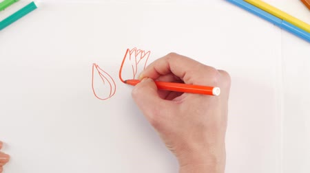 ołówek : Woman drawing the flowers using different felt-tip pen on white paper Wideo