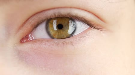 olhos verdes : Human eye blinks, close up, slow motion Stock Footage