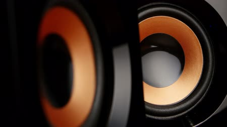 loud music : Speaker cone pumping to the sound of the bass. Closeup Stock Footage