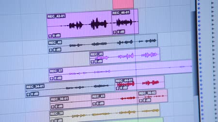 premier : Audio or sound editing software going through the Timeline