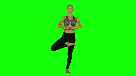 зеленый фон : Girl is engaged in yoga on a background. Green screen
