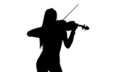 houslista : Violinist . Silhouette on white background. Slow motion Dostupné videozáznamy