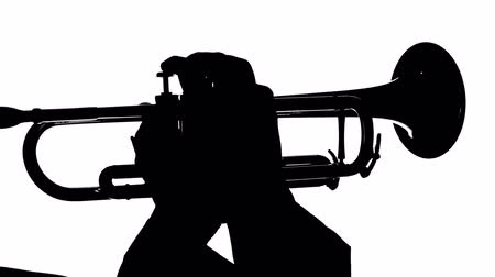 рукав : Silhouette of a musician playing on the wind instrument