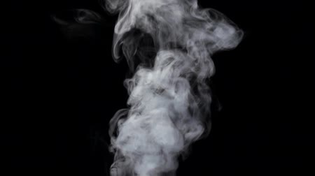 fumo : Smoke billowing over steady flow on black background, slow motion Vídeos