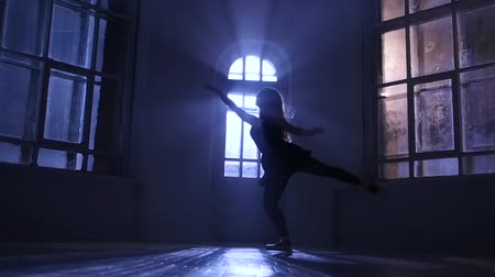 odráží : Ballerina girl practicing ballet in studio, moonlight silhouette. Slow motion