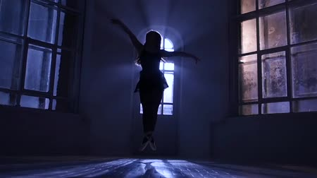 fingertips : Graceful girl dancing contemporary dance, jumps in silhouette. Slow motion