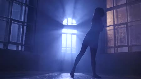 fingertips : Modern girl with long hair dance contemporary, silhouette. Slow motion