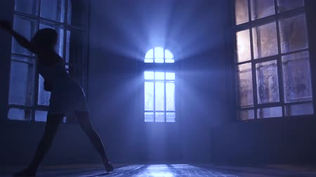 fingertips : Graceful girl dancer practicing contemporary at studio in moonlight, silhouette Stock Footage