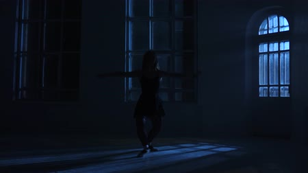 fingertips : Pirouettes performed by professional dancer girl in the moonlight, silhouette Stock Footage