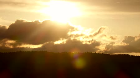 hides : Sunset in clouds and over tops fir trees. Time lapse Stock Footage