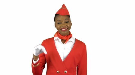 okey : Stewardess in gloves shows okey. Alpha channel