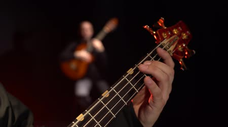 flamenco : Two guitarists play the bass guitar. Close up. Background blur