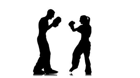 хит : Working out of direct blows of kickboxing on boxing paws . Silhouette. White background