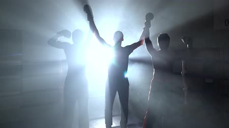 wrestler : Referee announces the winner in the sparring result draw. Smoke background. Light from behind. Silhouette Stock Footage