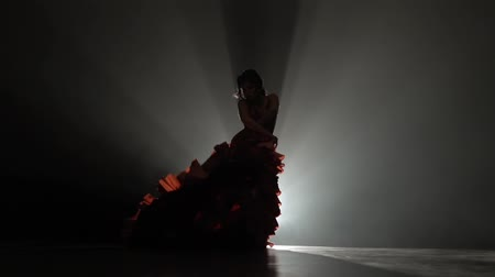 flamenco : Girl is dancing with castanets and her leg is tugging at the tail of the dress. Light from behind. Smoke background. Slow motion