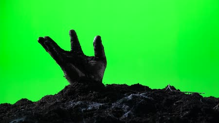 hrobky : Zombie hand emerging from the ground grave. Halloween concept. Green screen. 008 Dostupné videozáznamy