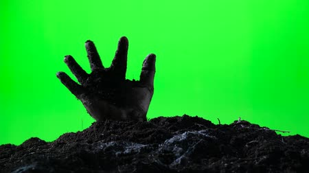 doom : Zombie hand emerging from the ground grave. Halloween concept. Green screen. 009