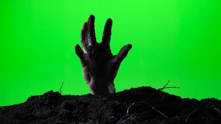 doom : Zombie hand emerging from the ground grave. Halloween concept. Green screen. 015 Stock Footage