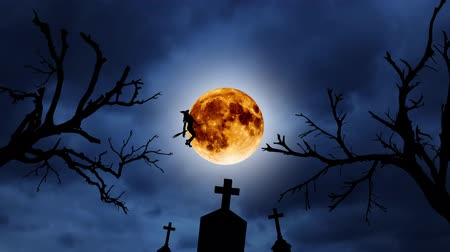 flying witch : Silhouette of a young witch flying on a broomstick against the background of the orange moon. Halloween. Over old trees and graveyard