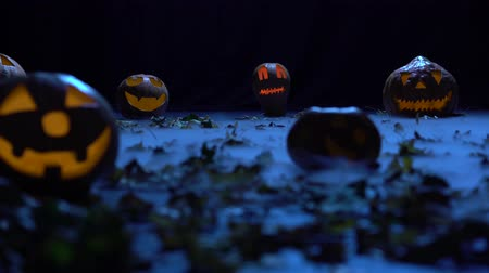 чаща : Scary pumpkins on Halloween in the dark forest are burning like lanterns in smoke