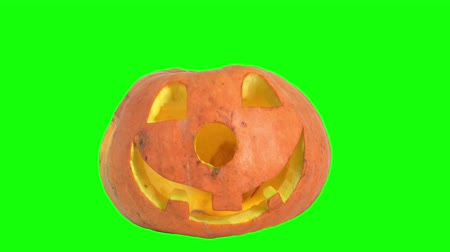jardim : Halloween pumpkin with a scary face on a green screen