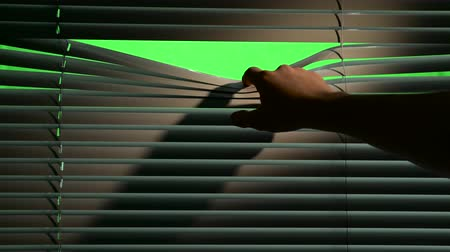 rolety : Person opens horizontally jalousie curtains with a finger. Green screen