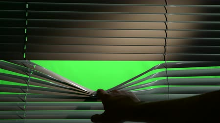 слепой : Human opens horizontally jalousie blinds. Green screen