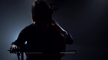 виолончель : Silhouette of a girl playing the cello in a night studio. Black smoke background