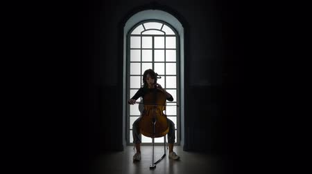 opus : Girl playing on Cello a musical composition in the evening against the window
