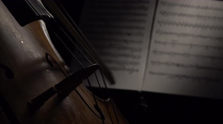 виолончель : Dark room with cello bow on strings. Close up. Side view