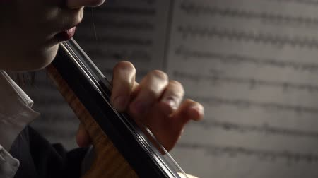 луки : Hands on the cello string in the background sheets with notes. Close up. Side view