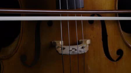 opus : Close up of the bow touches the strings on a cello