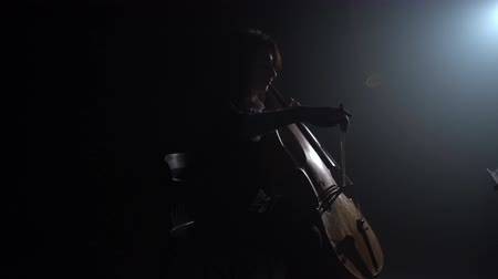 виолончель : Girl plays the cello in a dark room and looks at the music stand. Silhouette. Black smoke background. Side view