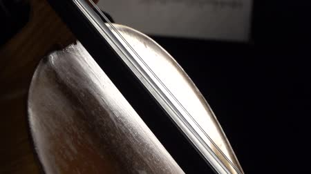 instrumento : Cello close up of bows carry on the string with notes in a dark room. Side view. Slow motion