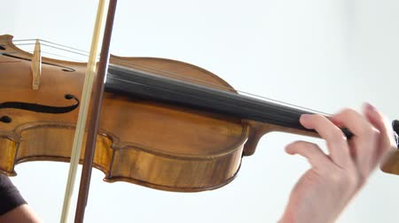 opus : Girl fingering the strings playing the violin. Close up. White background Stock Footage