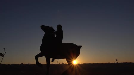 Guy sits on a horse and gives him two legs . Slow motion. Silhouette. Side view