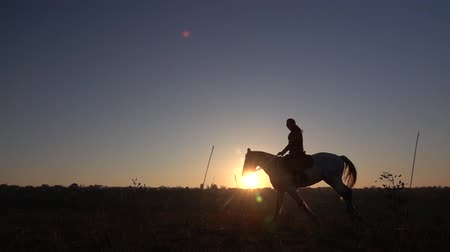Side view of female horseback riding during sunset. Slow motion