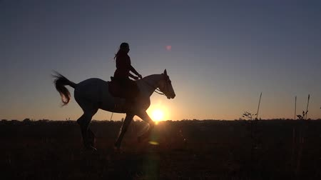мерцание : Side view of woman horseback riding during sunset. Slow motion