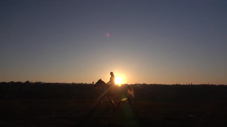 Silhouette rider on horse on sunset. Slow motion