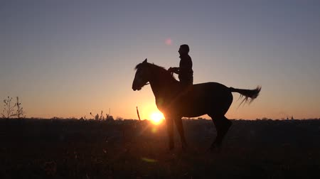 Man sits on a horse and gives him two legs . Slow motion. Silhouette. Side view
