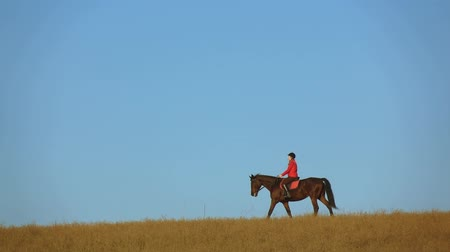 Woman on a horse outdoors in the field. Slow motion. Side view