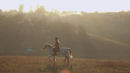 Girl rider guides a horse she shakes his head and wag his tail. Slow motion Dostupné videozáznamy
