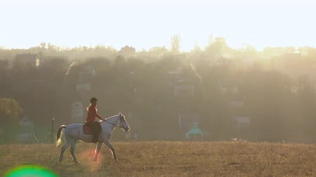 takes : Riding a horse across a field around a residential sector with houses. Slow motion