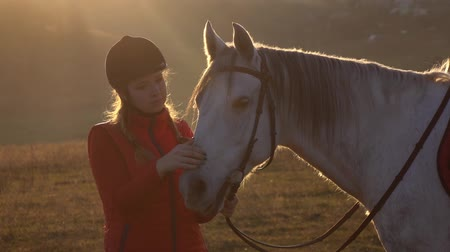 Girl is standing in the meadow and stroking the horse a beautiful sunset. Slow motion. Close up Dostupné videozáznamy